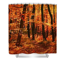 Golden Autumn Forest Shower Curtain by Gabriella Weninger - David