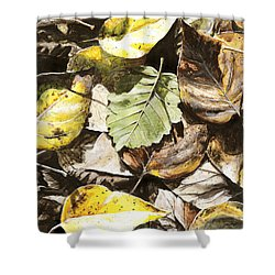 Shower Curtain featuring the painting Golden Autumn - Talkeetna Leaves by Karen Whitworth