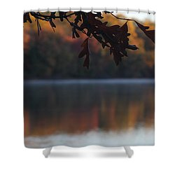Shower Curtain featuring the photograph Golden Autumn by Vadim Levin