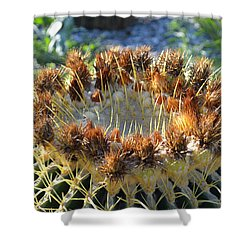 Shower Curtain featuring the photograph Golden Barrel Cactus by Glenn McCarthy Art and Photography