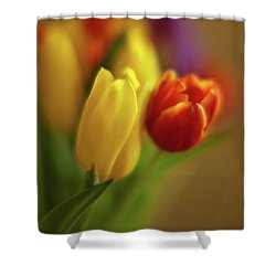 Golden Bouquet Shower Curtain by Mike Reid