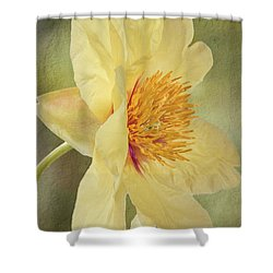 Golden Bowl Tree Peony Bloom - Profile Shower Curtain