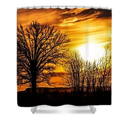 Golden Brushstrokes Shower Curtain