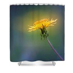 Golden  Shower Curtain by Bulik Elena