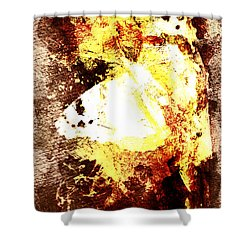 Golden Butterfly Shower Curtain by Andrea Barbieri