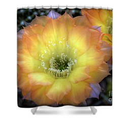 Golden Cactus Bloom Shower Curtain