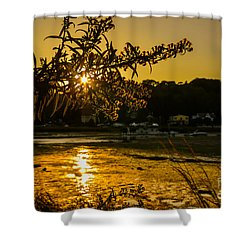 Golden Centerport Shower Curtain
