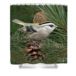 Golden Crowned Kinglet Shower Curtain