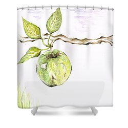 Golden Delishous Apple Shower Curtain