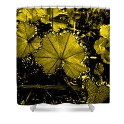 Golden Dew Shower Curtain