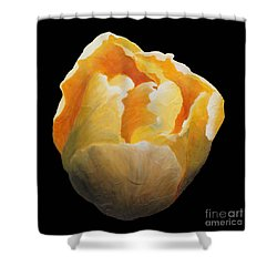 Shower Curtain featuring the painting Golden Double Tulip by Phyllis Howard