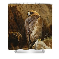 Golden Eagles At Their Eyrie Shower Curtain by Archibald Thorburn