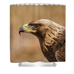 Golden Eagle's Portrait Shower Curtain by Torbjorn Swenelius