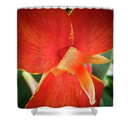 Shower Curtain featuring the photograph Golden Edge by David Coblitz