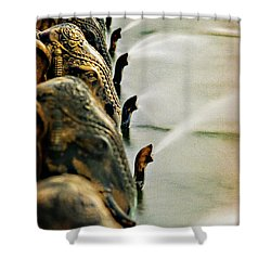 Golden Elephant Fountain Shower Curtain