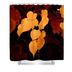 Golden Fall Leaves Shower Curtain