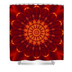 Golden Fractal Mandala Daisy Shower Curtain