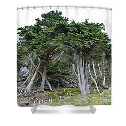 Golden Gate Sentinels Shower Curtain