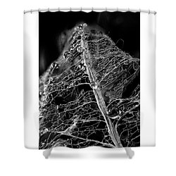 Golden Globules  Shower Curtain