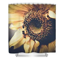 Shower Curtain featuring the photograph Golden Honey Bees And Sunflower by Sharon Mau