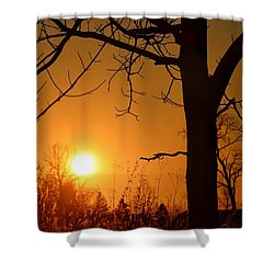 Golden Hour Daydreams Shower Curtain