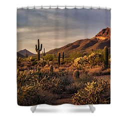 Shower Curtain featuring the photograph Golden Hour On The Usery  by Saija Lehtonen