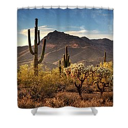 Shower Curtain featuring the photograph Golden Hour On Usery Mountain  by Saija Lehtonen