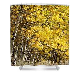 Golden II Shower Curtain