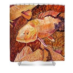 Golden Koi Shower Curtain by Pat Saunders-White