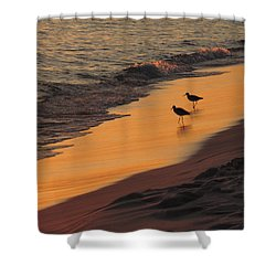 Golden Light At Sunset Shower Curtain