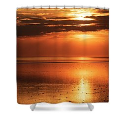 Golden Light Shower Curtain