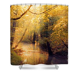 Shower Curtain featuring the photograph Golden Light by Geraldine DeBoer