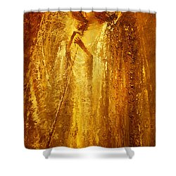 Golden Light Of Angel Shower Curtain