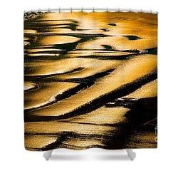 Golden Light On The Wet Sand, Point Reyes National Seashore Mar Shower Curtain by Wernher Krutein