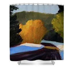 Shower Curtain featuring the painting Golden Light Winter Road by Nancy Merkle