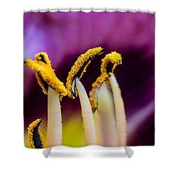 Golden Macro Shower Curtain