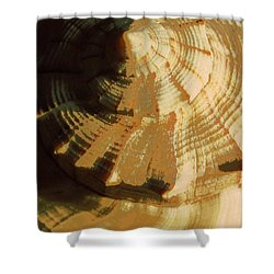 Golden Mean I Shower Curtain by Carolina Liechtenstein