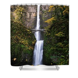 Golden Multnomah Shower Curtain