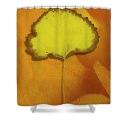Golden Oldie Shower Curtain