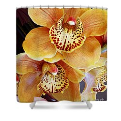 Golden Orchid Shower Curtain