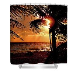 Golden Palm Sunrise Shower Curtain by Meta Gatschenberger