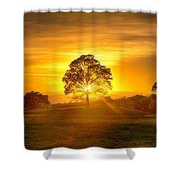 Golden Pastures Shower Curtain
