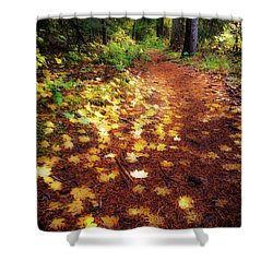 Shower Curtain featuring the photograph Golden Path by Cat Connor