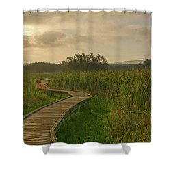 Golden Pathway To A Foggy Sun Shower Curtain