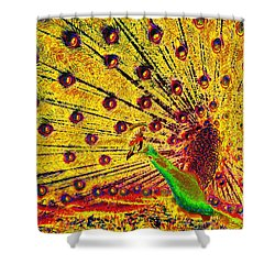 Golden Peacock Shower Curtain by David Lee Thompson
