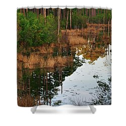 Shower Curtain featuring the photograph Golden Pond by Lori Mellen-Pagliaro