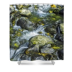 Golden Promise Shower Curtain