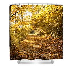 Golden Rays Of Autumn Shower Curtain