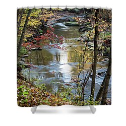 Shower Curtain featuring the photograph Golden Reflections by Dale Kincaid