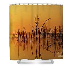 Golden Reflections Shower Curtain